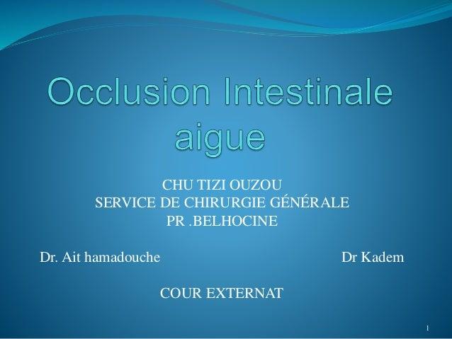 CHU TIZI OUZOU SERVICE DE CHIRURGIE GÉNÉRALE PR .BELHOCINE Dr. Ait hamadouche Dr Kadem COUR EXTERNAT 1