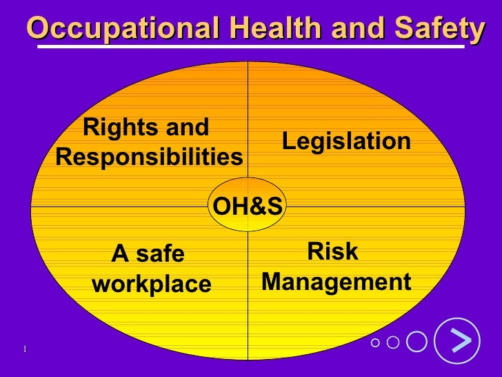 Occupational Health and Safety Rights and  Responsibilities Legislation A safe  workplace Risk  Management OH&S