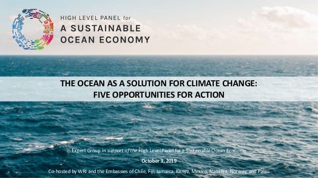 THE OCEAN AS A SOLUTION FOR CLIMATE CHANGE: FIVE OPPORTUNITIES FOR ACTION Expert Group in support of the High Level Panel ...