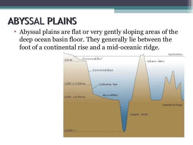 Ocean floor-topography