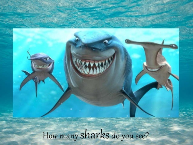 Image of: Deep Sea How Many Sharksdo You See Slideshare Ocean Animals