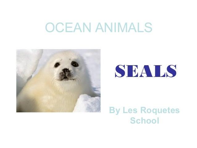 SEALSOCEAN ANIMALSBy Les RoquetesSchool