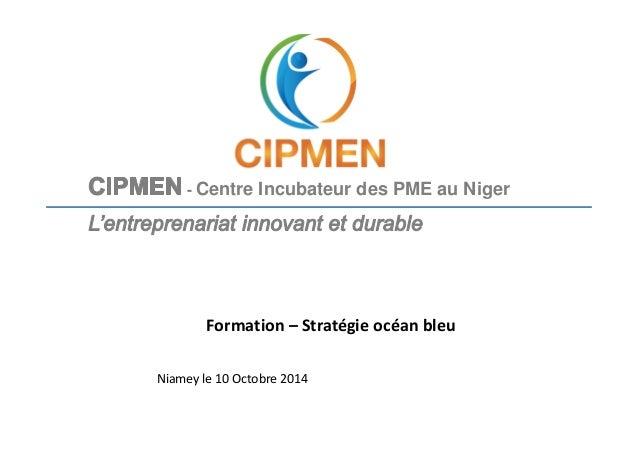 - Centre Incubateur des PME au Niger  Formation – Stratégie océan bleu  Niamey le 10 Octobre 2014