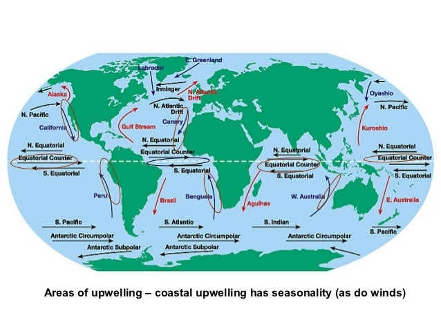 Ocean circulation may global wind induced upwelling gumiabroncs Images