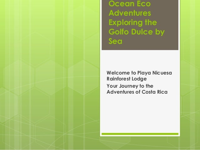 Ocean Eco Adventures Exploring the Golfo Dulce by Sea  Welcome to Playa Nicuesa Rainforest Lodge Your Journey to the Adven...