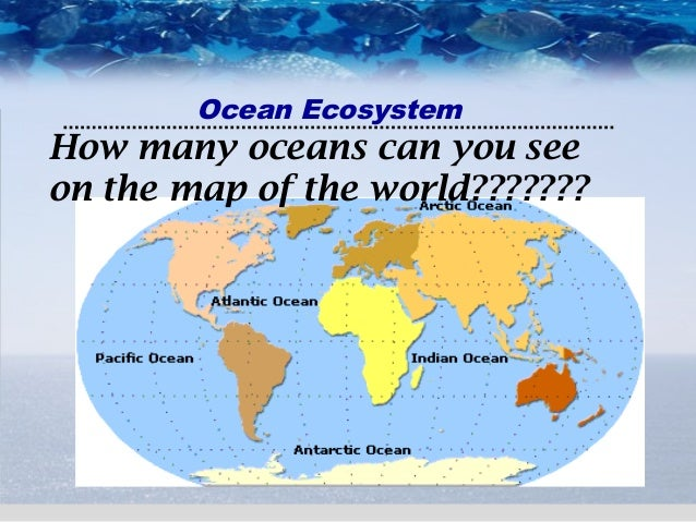 Ocean Ecosystem - How many oceans in the world
