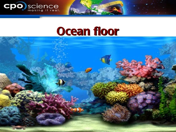 Ocean Floors Wikizie Co