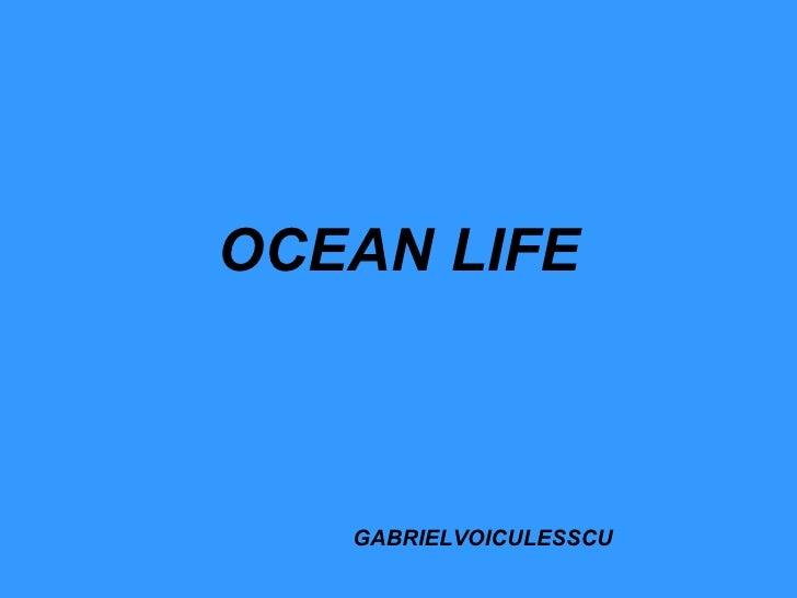 OCEAN LIFE GABRIELVOICULESSCU