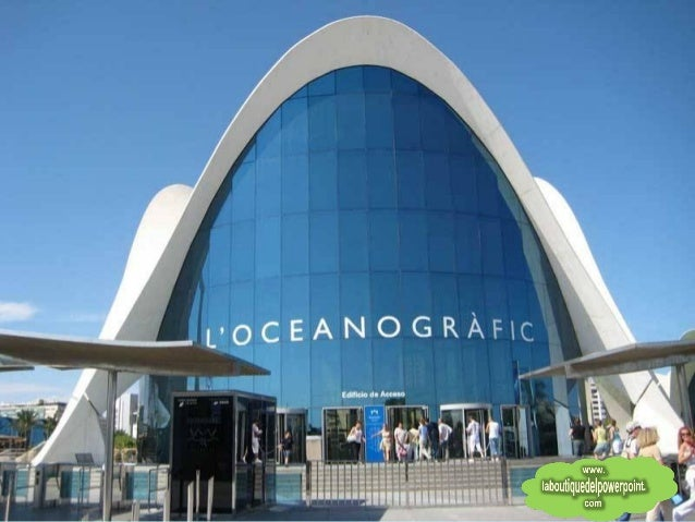 Oceanografico de valencia for Oceanografico valencia