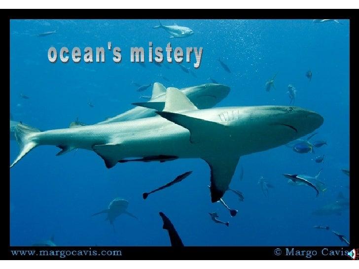 ocean's mistery