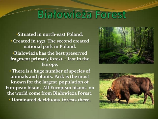 Common Natural Resources In Poland