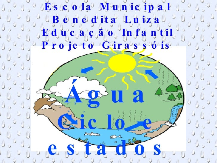 Escola Municipal Benedita Luiza Educação Infantil Projeto Girassóis Água Ciclo e estados