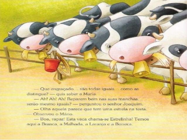 O ciclo do leite