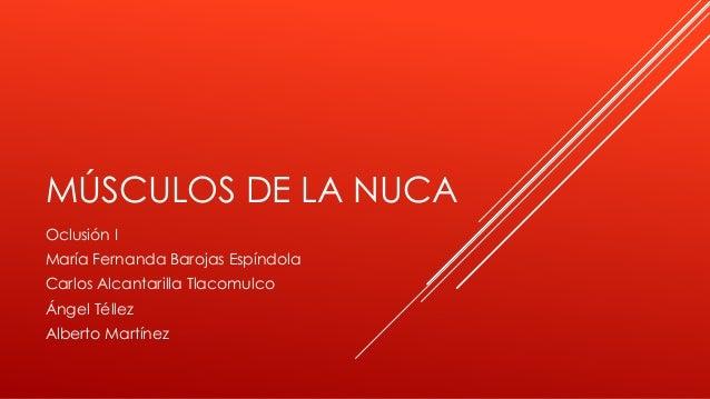 MÚSCULOS DE LA NUCA Oclusión I María Fernanda Barojas Espíndola Carlos Alcantarilla Tlacomulco Ángel Téllez Alberto Martín...