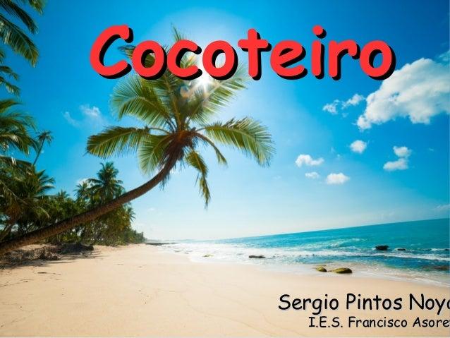Cocoteiro  Sergio Pintos Noya  I.E.S. Francisco Asorey Asore