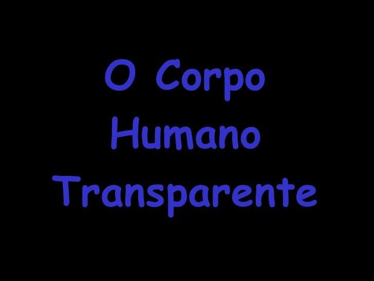 O Corpo Humano Transparente