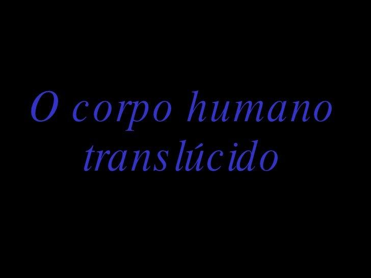 O corpo humano translúcido