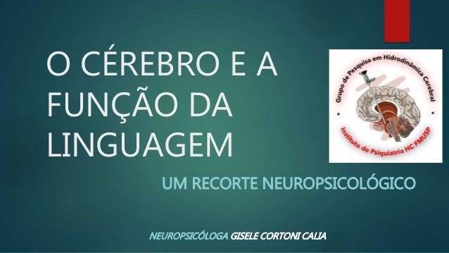 O CÉREBRO E A FUNÇÃO DA LINGUAGEM UM RECORTE NEUROPSICOLÓGICO NEUROPSICÓLOGA GISELE CORTONI CALIA