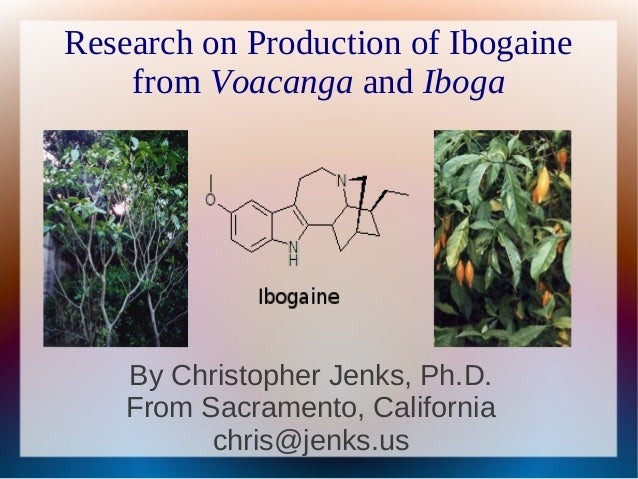 Research on Production of Ibogaine    from Voacanga and Iboga    By Christopher Jenks, Ph.D.    From Sacramento, Californi...