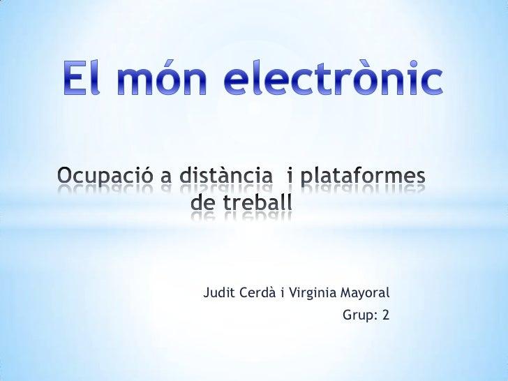 Judit Cerdà i Virginia Mayoral                      Grup: 2