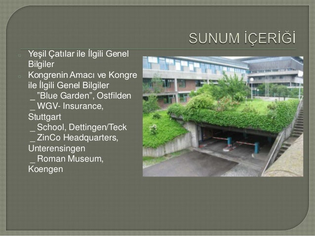 Green Roofs Impressions From Germany International Green