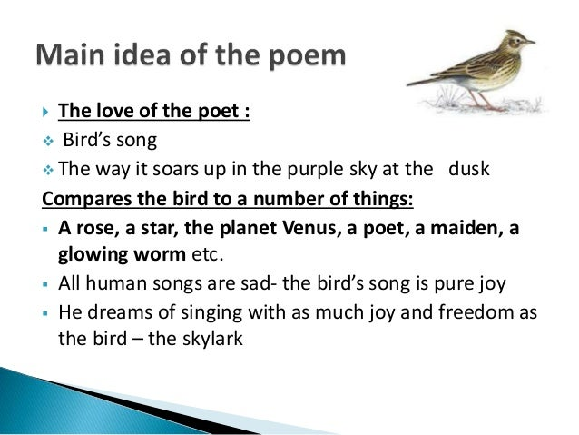 to a skylark meaning