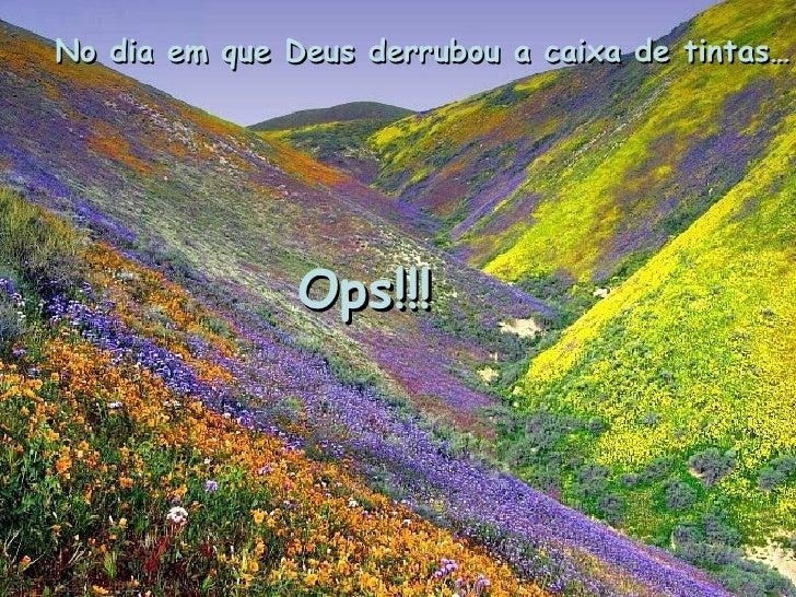 No dia em que Deus derrubou a caixa de tintas…  Ops!!!