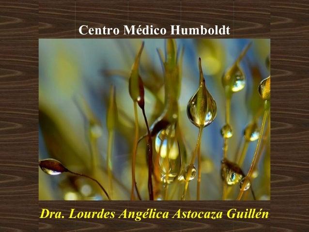 Centro Médico Humboldt Dra. Lourdes Angélica Astocaza Guillén