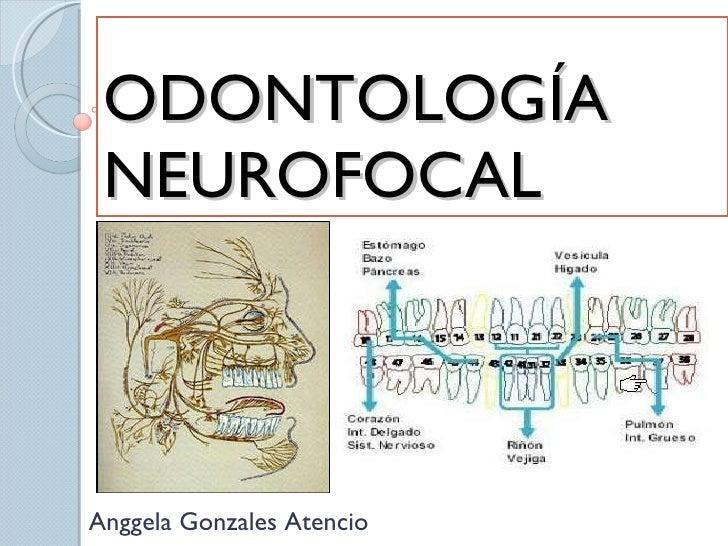 Resultado de imagen de odontología Neurofocal,