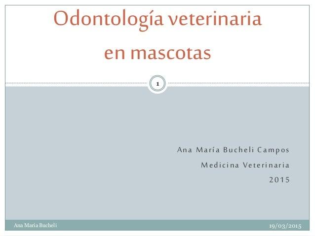 Ana María Bucheli Campos Medicina Veterinaria 2015 Odontologíaveterinaria en mascotas 19/03/2015 1 Ana Maria Bucheli