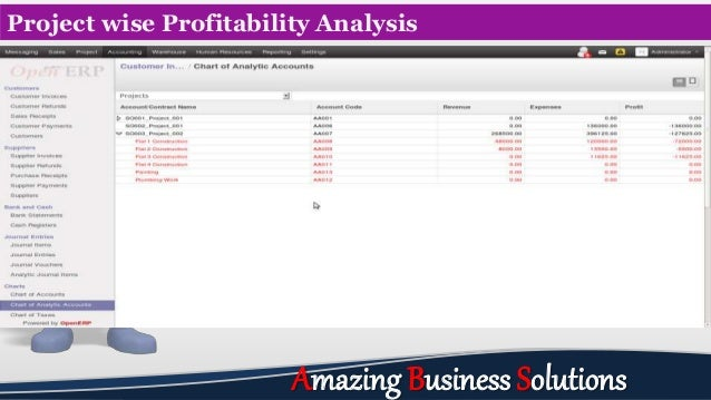 Project wise Profitability Analysis Amazing Business Solutions