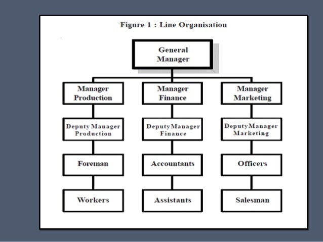 organizational structures on the basis of functions