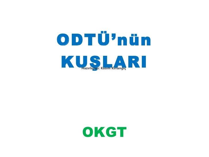 ODTÜ'nün KUŞLARI Hazırlayan: Kasım Kırlangıç  OKGT