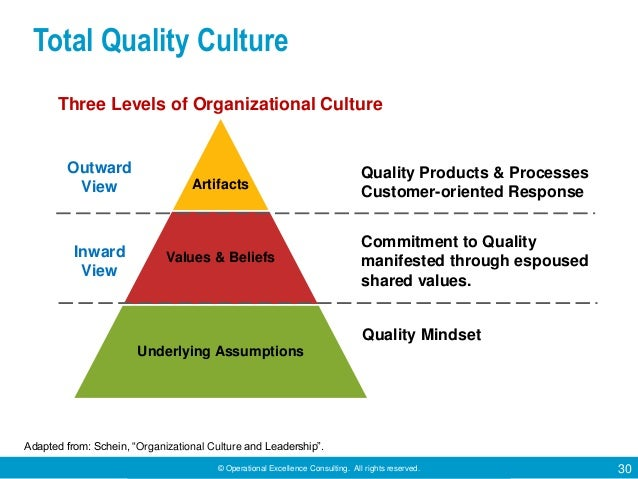 © Operational Excellence Consulting. All rights reserved. 30 Artifacts Values & Beliefs Underlying Assumptions Outward Vie...