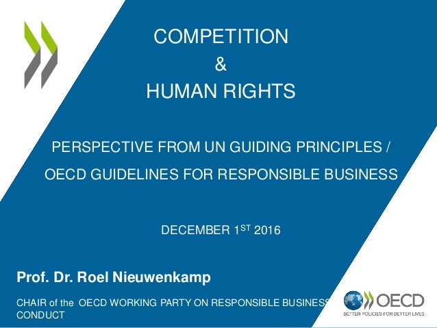 COMPETITION & HUMAN RIGHTS PERSPECTIVE FROM UN GUIDING PRINCIPLES / OECD GUIDELINES FOR RESPONSIBLE BUSINESS DECEMBER 1ST ...