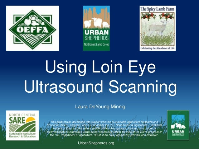 UrbanShepherds.org Using Loin Eye Ultrasound Scanning This product was developed with support from the Sustainable Agricul...