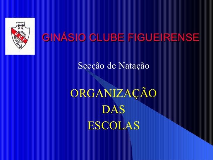 GINÁSIO CLUBE FIGUEIRENSE Secção de Natação ORGANIZAÇÃO DAS ESCOLAS