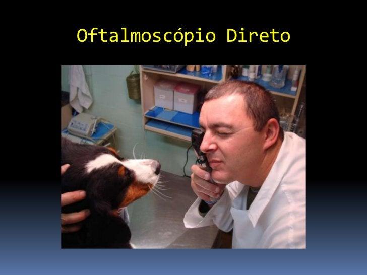 Imagem Retina Oftalmoscópio direto