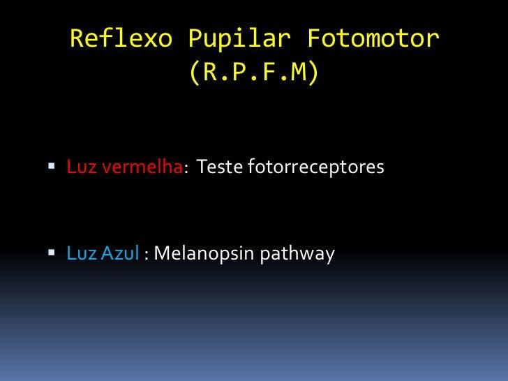 """""""Dazzle reflex""""                Ofuscamento Reflexo subcortical Fonte de luz bem Forte Retração bulbo e fechamento pálpe..."""
