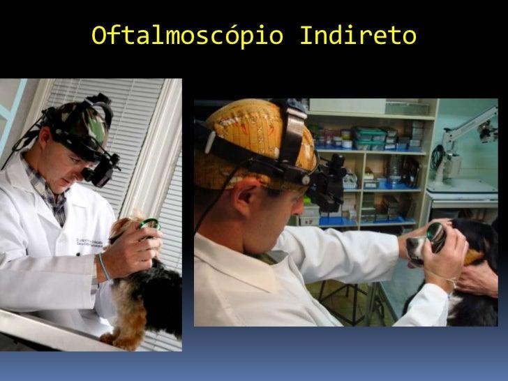 Pan Retinal 2.2         Campo visual 56 a 73º         Magnificação 2.68 x         Exame a 4 cm
