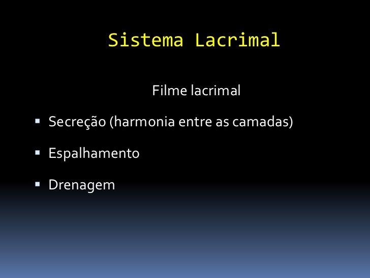 Córnea Lisa Transparente Avascular Cobertura de filme lacrimal
