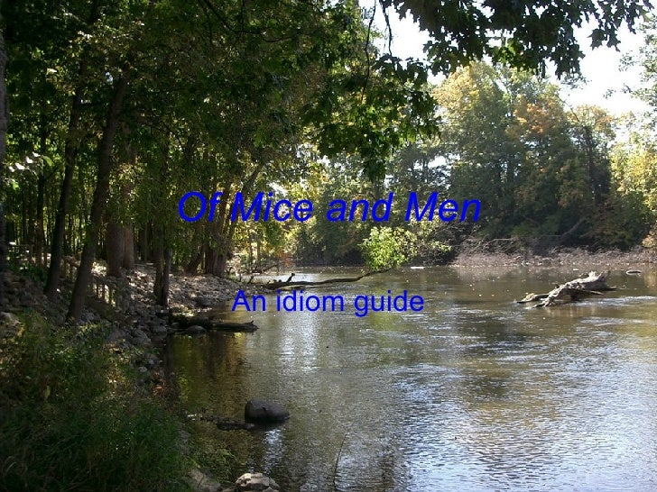 Of Mice and Men An idiom guide