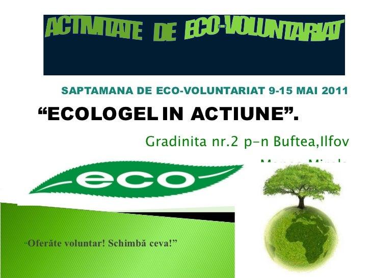 """SAPTAMANA DE ECO-VOLUNTARIAT 9-15 MAI 2011 """" ECOLOGEL   IN ACTIUNE"""".  Gradinita nr.2 p-n Buftea,Ilfov Prof.coordonator:  M..."""