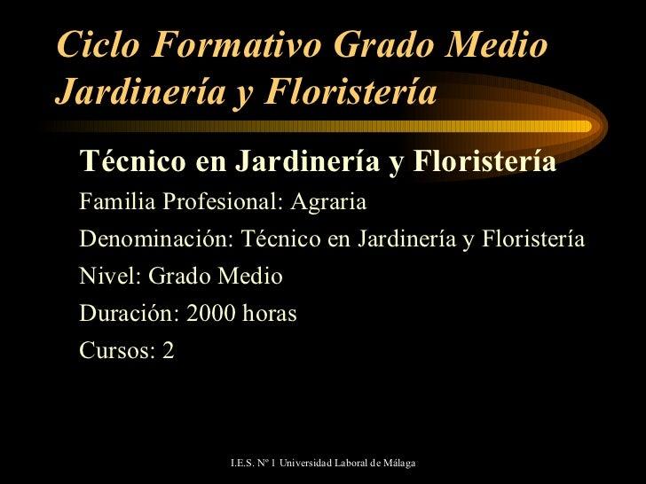Oferta Educativa De La Universidad Laboral De Málaga