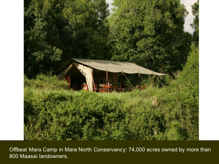 Offbeat Mara Camp in Mara North Conservancy: 74,000 acres owned by more than 800 Maasai landowners.