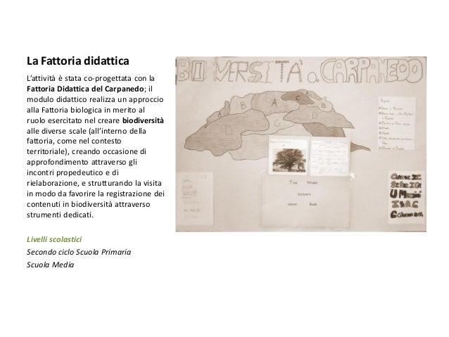 Offerta formativa 2014 2015 LABTER Comune della Spezia