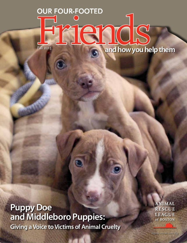 OUR FOUR-FOOTED  Friends Fall 2013  and how you help them  Puppy Doe and Middleboro Puppies: Giving a Voice to Victims of ...