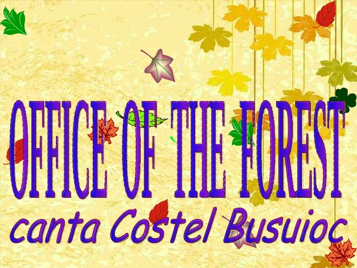 OFFICE  OF  THE  FOREST canta Costel Busuioc