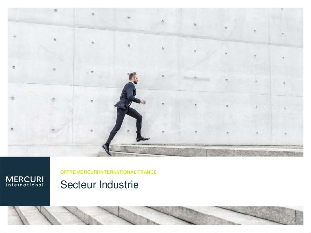 Secteur Industrie OFFRE MERCURI INTERNATIONAL FRANCE
