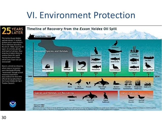 Offshore Oil And Gas Overview
